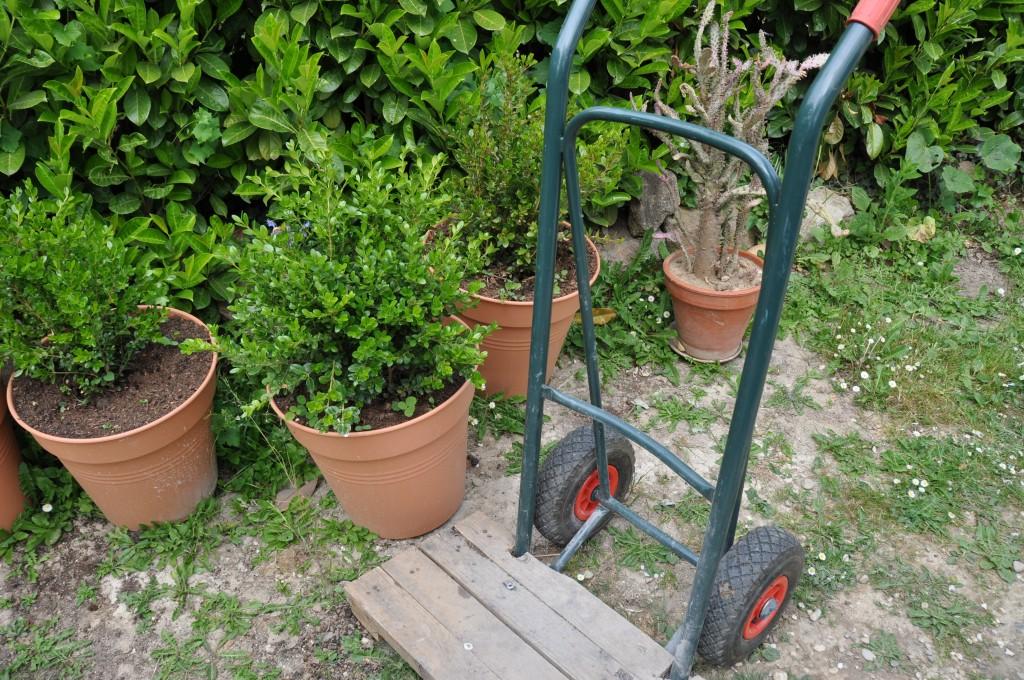7 outils incontournables pour le jardin 7 familles d for Jardin entretien jean paul traineau