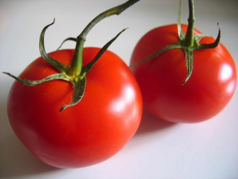 Planter des tomates jardiner avec jean paul - Planter des tomates ...