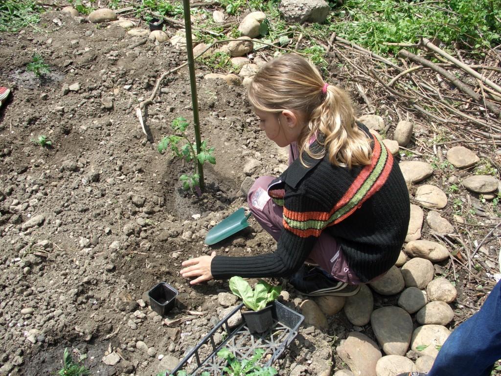Faire manger des l gumes aux enfants jardiner avec jean paul for Jardin entretien jean paul traineau