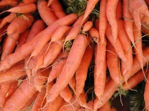 semer des carottes jardiner avec jean paul. Black Bedroom Furniture Sets. Home Design Ideas