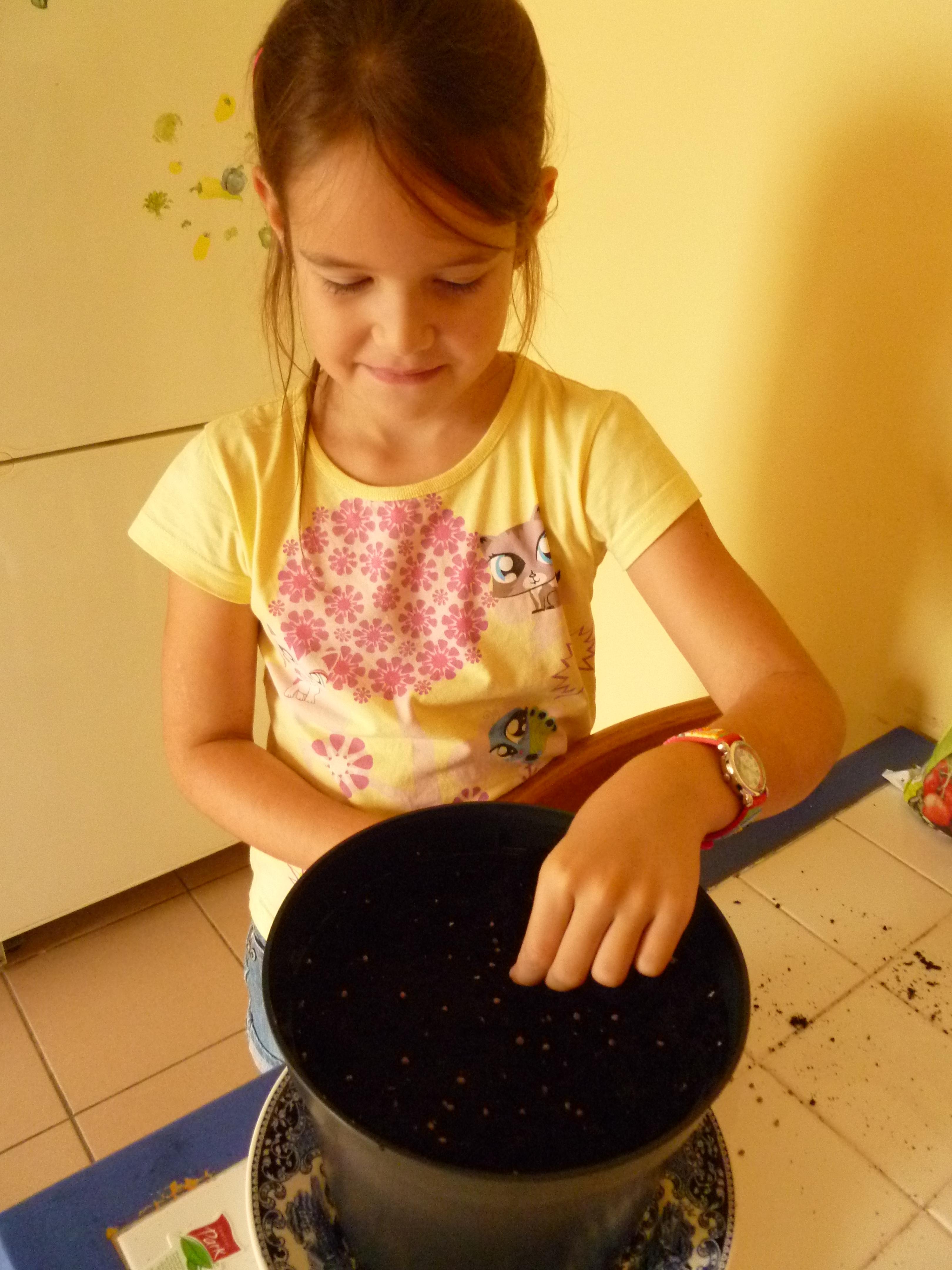 aujourd 39 hui sophie a sem ses radis par dominique jardiner avec jean paul. Black Bedroom Furniture Sets. Home Design Ideas