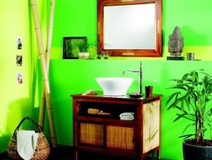 les plantes d polluantes pour la salle de bains jardiner. Black Bedroom Furniture Sets. Home Design Ideas