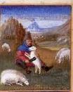 Avril-tonte des moutons