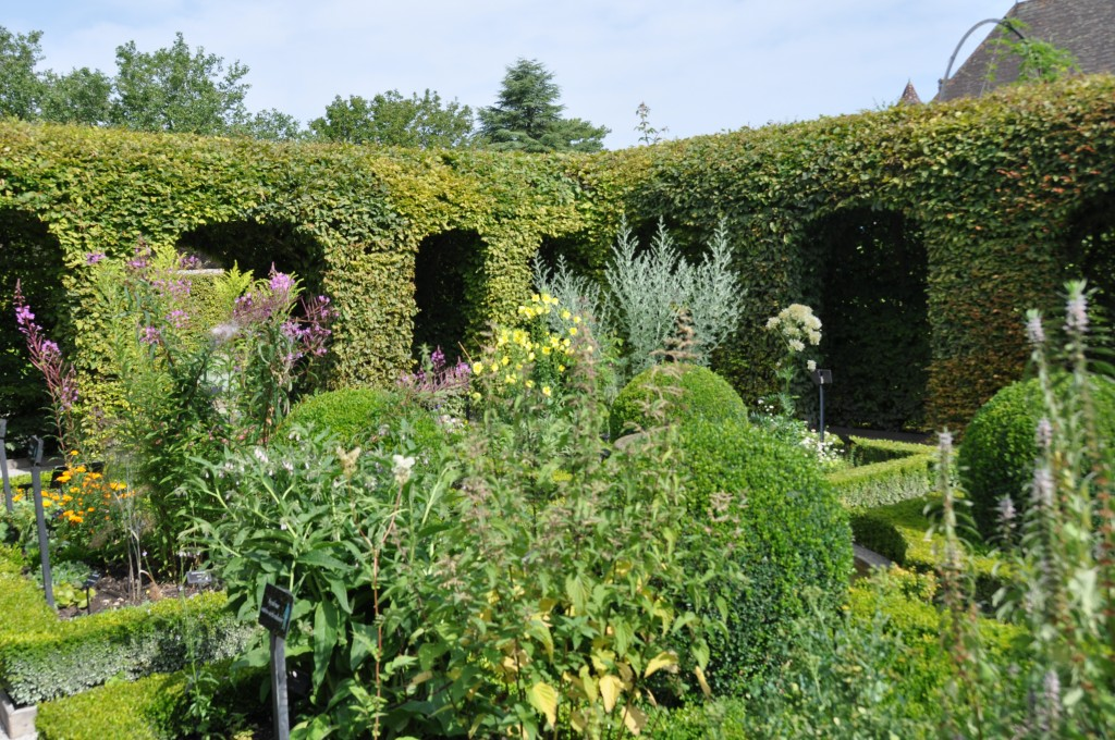 Jardin des cinq sens jardiner avec jean paul for Jardin entretien jean paul traineau