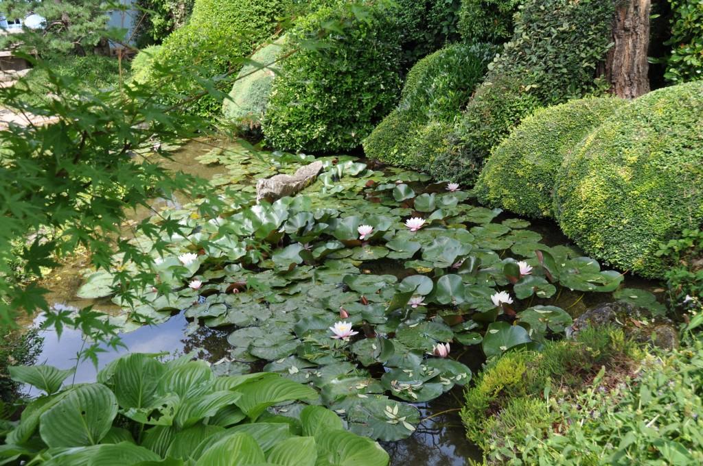 Un jardin zen dans la dr me jardiner avec jean paul for Jardines zen valladolid