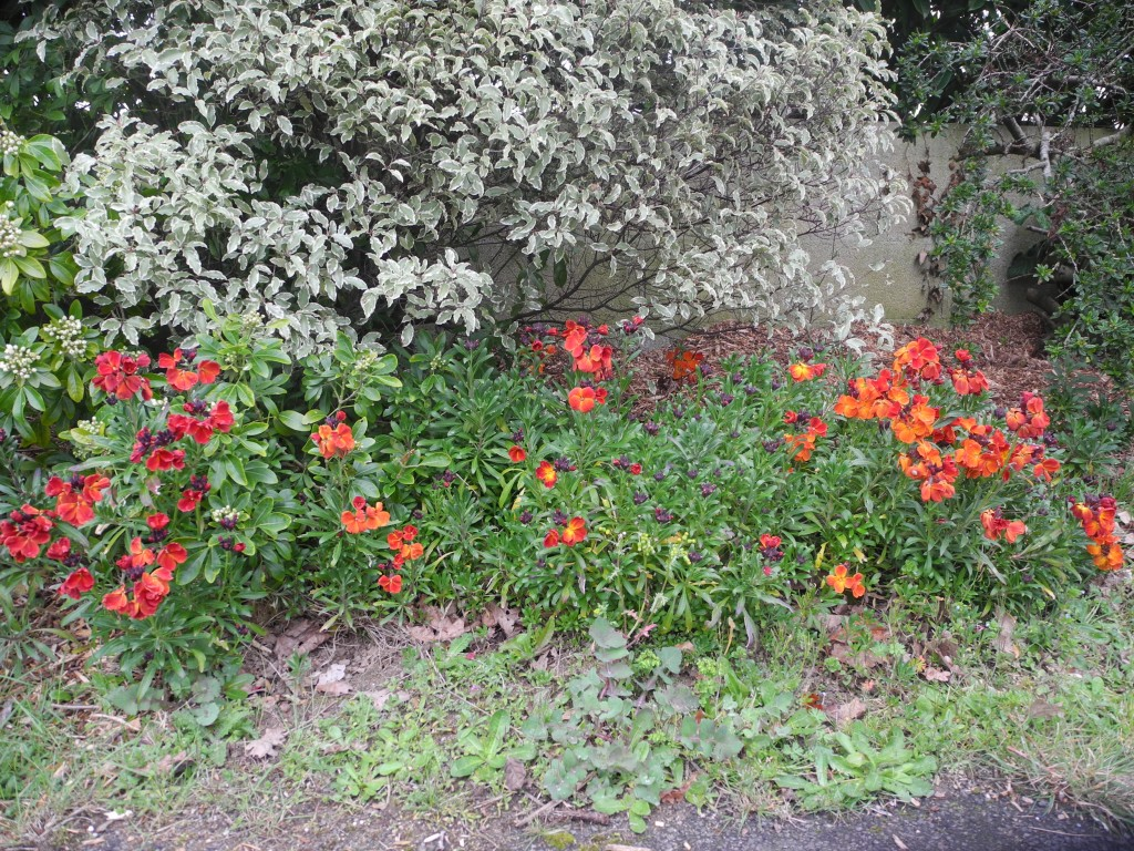 Jardiner avec jean paul naturellement bio - Jardiner avec la lune avril 2017 ...