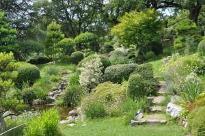 Jardin zen (77)