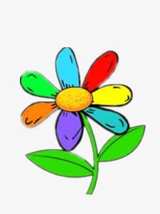 Fleur aux sept couleurs